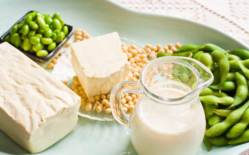 Plantbased proteins fermentation